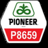 Pioneer П8659