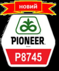 Pioneer П8745