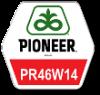 PR46W14 (Pioneer)