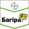 Багіра(Bayer)