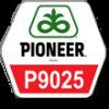 Pioneer П9025