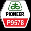 Pioneer П9578