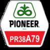 Pioneer ПР38А75